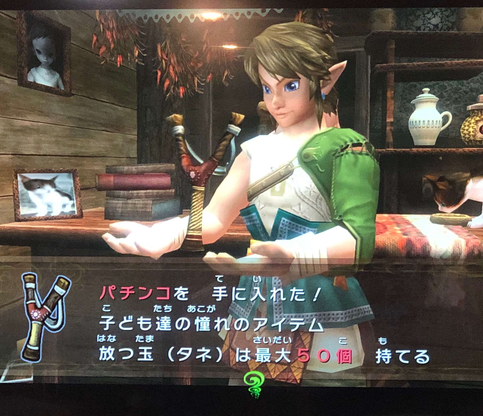 Scene from The Legend of Zelda: Twilight Princess